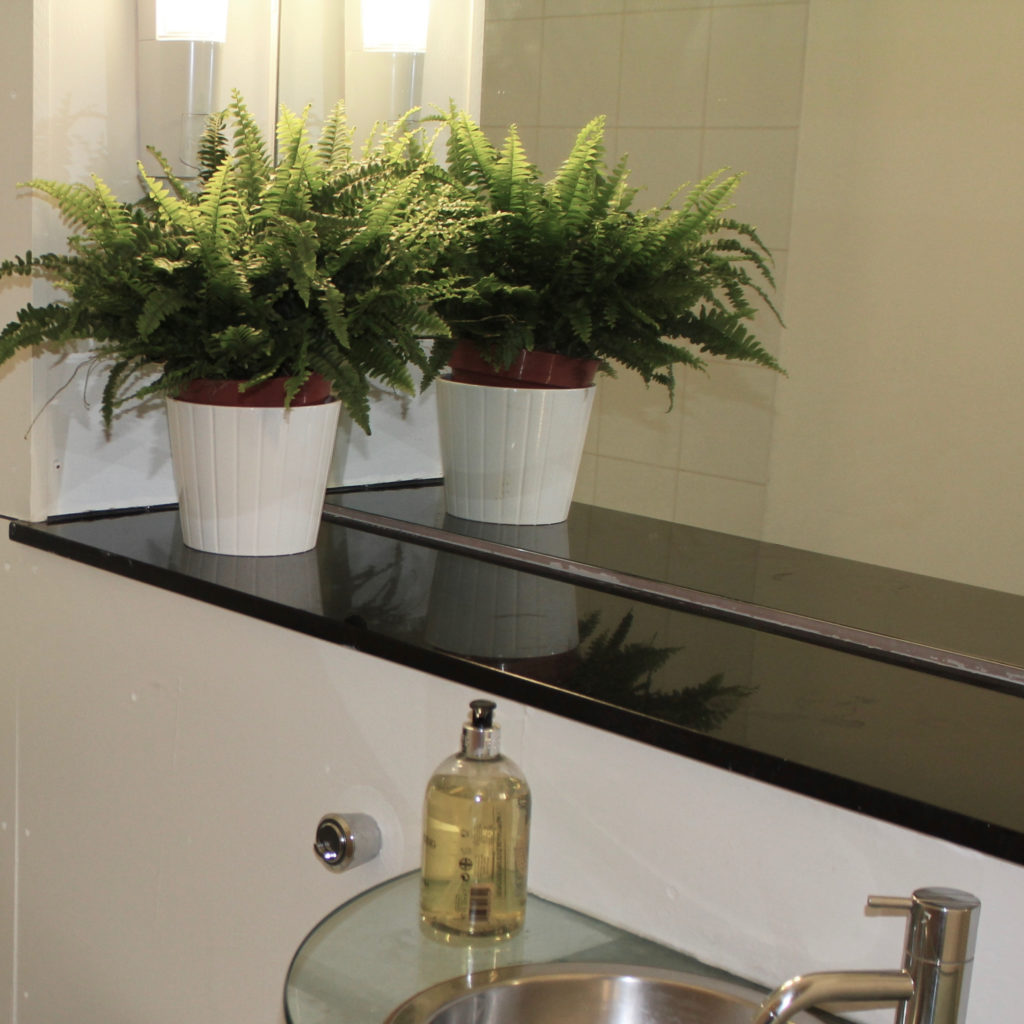 Islington town house fern in bathroom