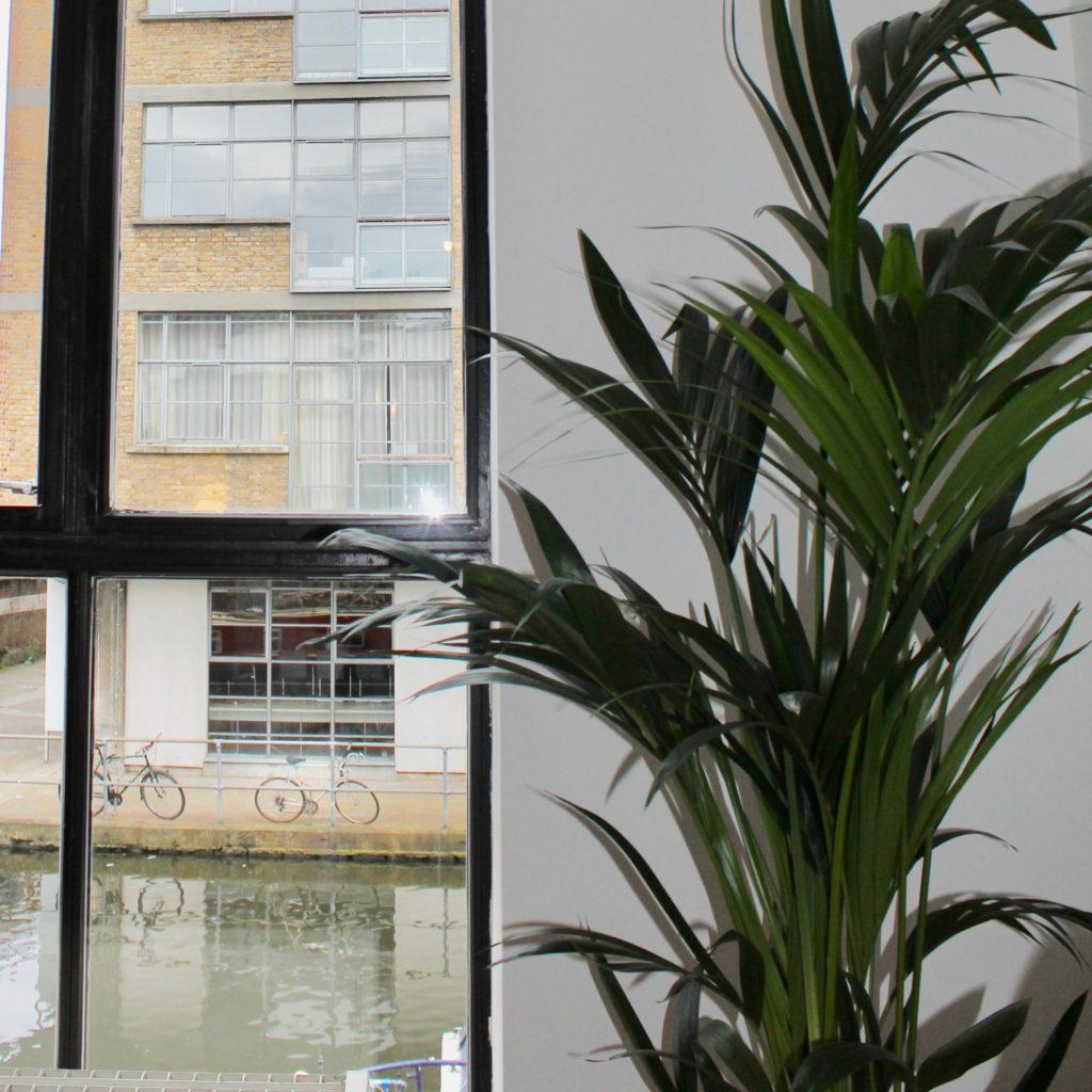 Islington town house palm