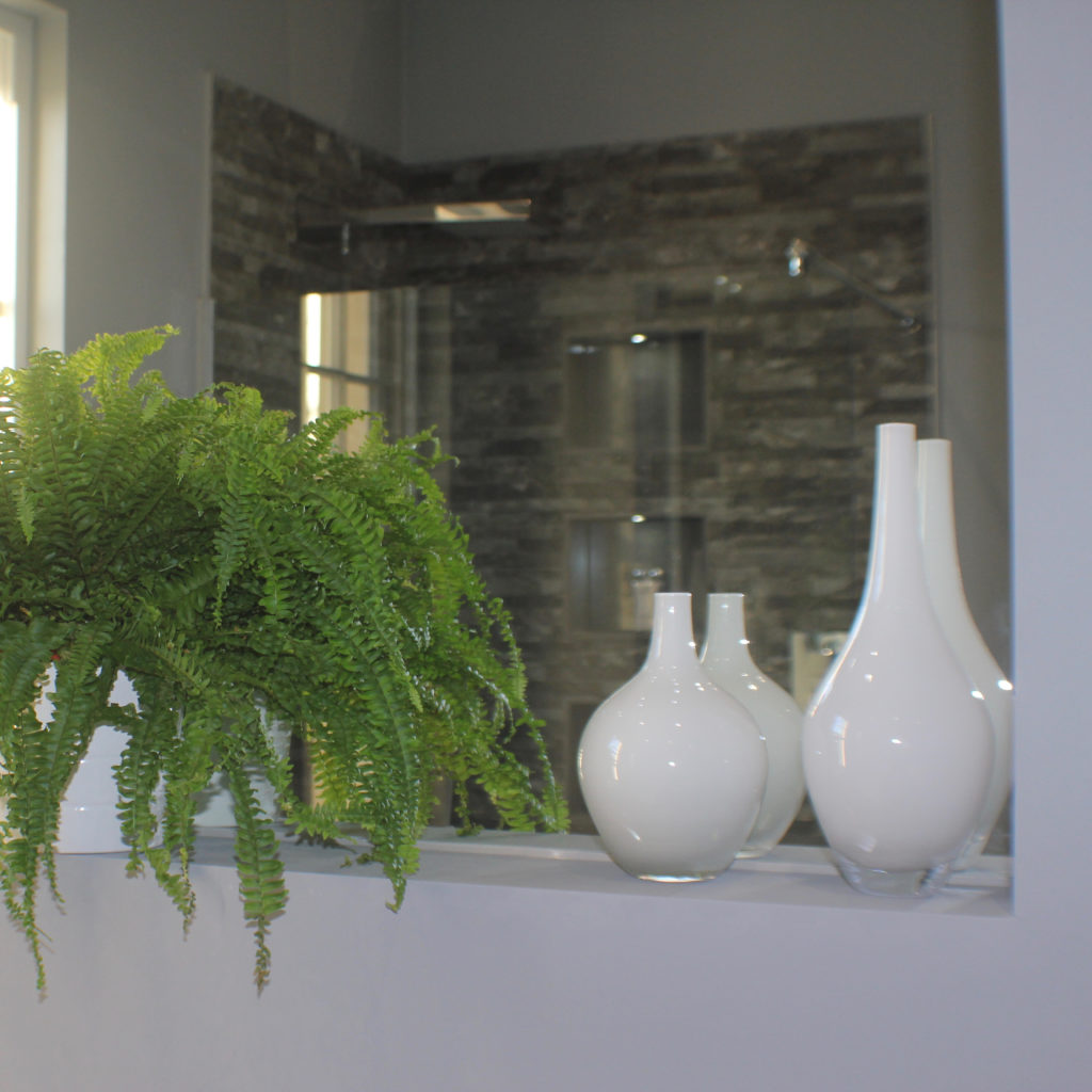Bathroom fern and bottles