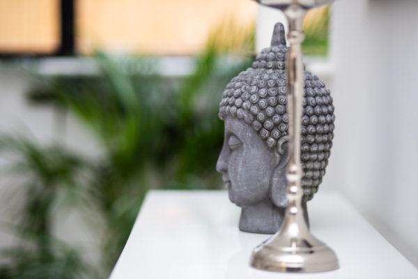 Visualisation tips buddha head