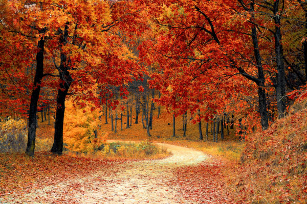 Selling a home in autumn